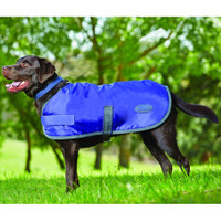 Weatherbeeta 420D Windbreaker Dog Coat Violet / Gray