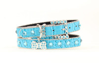 Turquoise Crock Dog Collar 1""