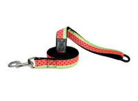 RC Dog Leash  Watermelon 6ft