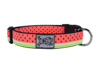 RC Clip Collar Watermelon