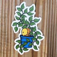 Everyday Balloons Plant Sticker