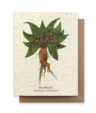 Plantable Seed Card: Mandrake
