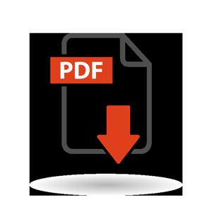 pdf-2.png