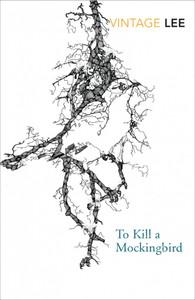 To Kill a Mockingbird (Vintage Classic Edn)