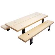 Dynamic Schoolyard Picnic Table