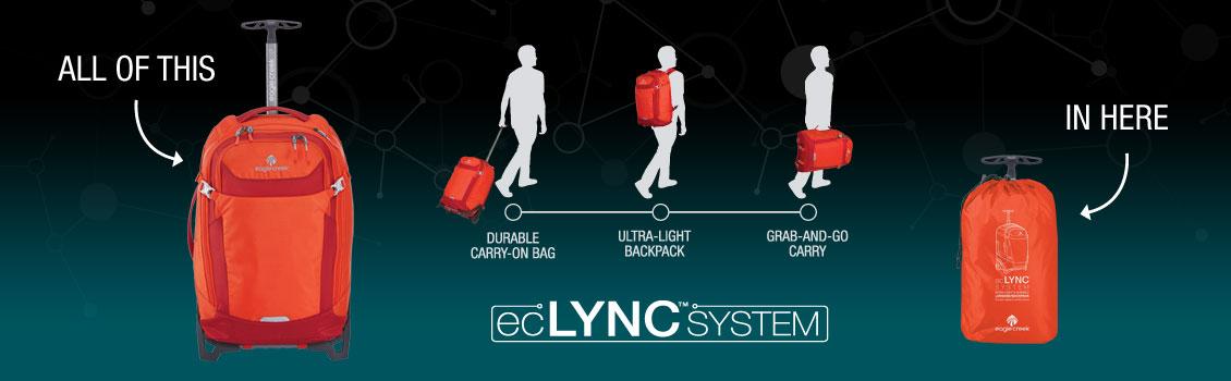 eclync-cat-102.jpg