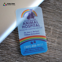 20pt Frosted Plastic Business Cards