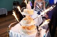 Champagne Bottle / Birthday Cake / Wedding Cake Sparklers