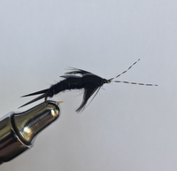 Carty's Stonefly - Black 2pk.