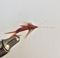 Carty's Stonefly - Brown 2pk.