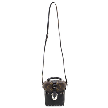 Louis Vuitton Monogram and Calfskin Camera Box Bag