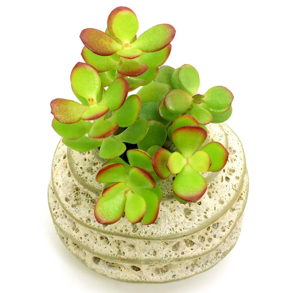 Bloomylife Handmade White Porcelain Ceramic Flower Pots Planter