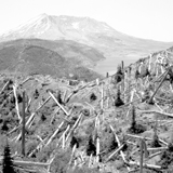 bryan-natinsky-mt-st-helens-3-icon.jpg