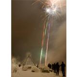 lene-foss-arctic-new-years-icon.jpg