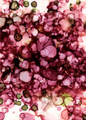 Rain Blossom no. 5 | Andrea Pramuk