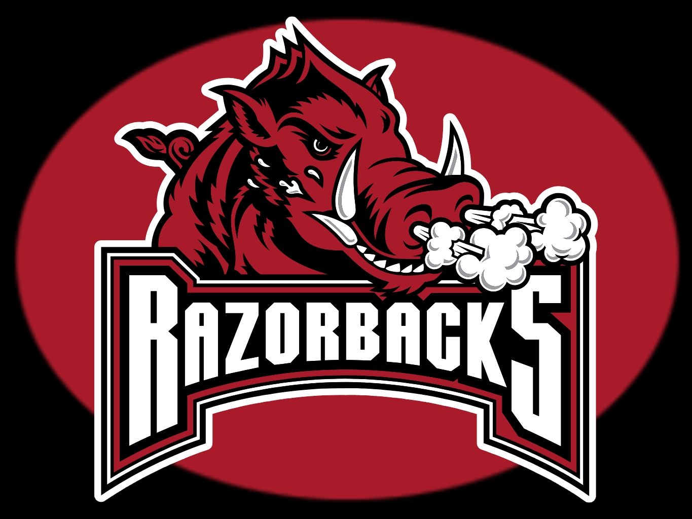 arkansasrazorbacks2.jpg