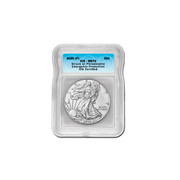 2020 (P) American Silver Eagle MS70 - Emergency ASE Production