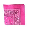 Hot Pink Paisley Bandanna 1917dz