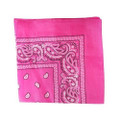 Hot Pink Paisley Bandanna 12 PACK 1917DZ