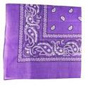 Purple Paisley Bandanna 1918DZ
