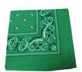 Green Paisley Bandanna 1930Dz