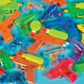 Water Gun Assortment Dozen 3387