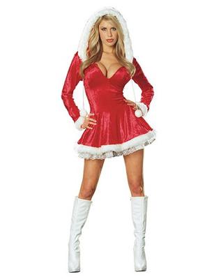 Sexy Sleigh Belle Costume