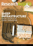 Research Report 116: Sheep Infrastructure