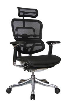 raynor-ergohuman-v2-headrest-ths.jpg