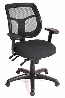 Raynor Apollo MT9450 Multi-function Ergonomic Task Chair
