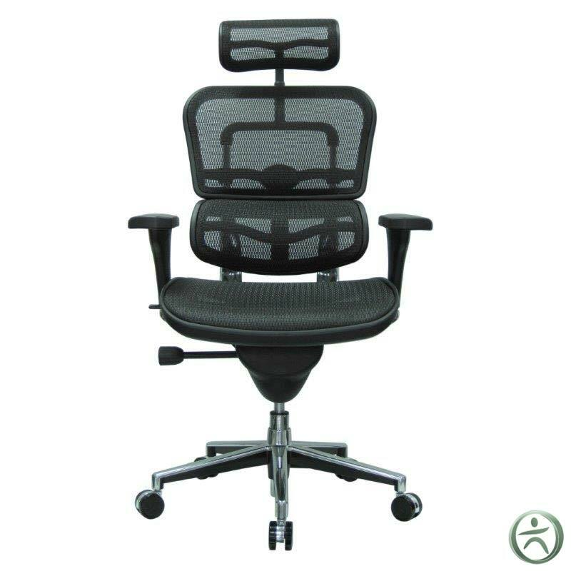 Raynor Me7erg Ergohuman Chair