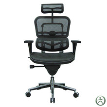 Ergohuman Chair ME7ERG - High Back with Headrest and Mesh  sc 1 st  Ergohuman & Raynor ME7ERG Ergohuman Chair