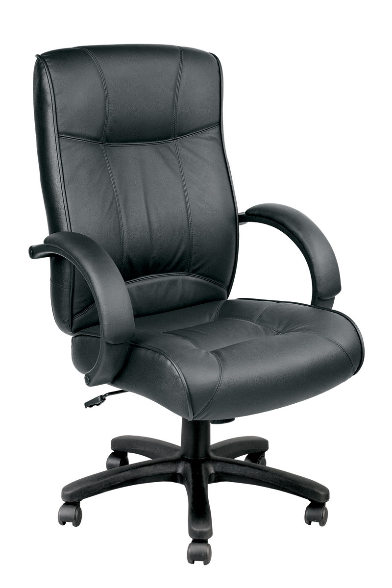 Phenomenal Eurotech Odyssey Executive Leather High Back Chair Le9406 Dailytribune Chair Design For Home Dailytribuneorg