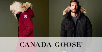 goose-bannersmall.jpg