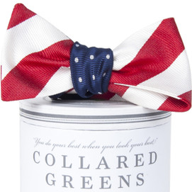 Collared Greens Stars and Stripes Mixer Bow Tie