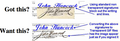 Transparent Signature Service for Signature and Initials For IMMEDIATE DELIVERY