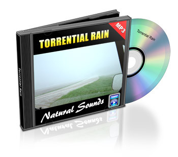 Torrential Rain Soundtrack