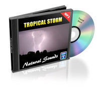 Tropical Storm Soundtrack