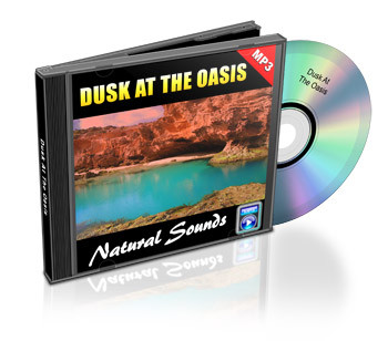 Dusk at the Oasis Soundtrack
