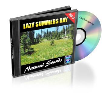 Lazy Summer Day Soundtrack
