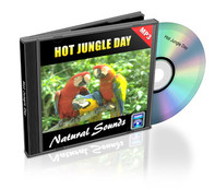 Hot Jungle Day Soundtrack
