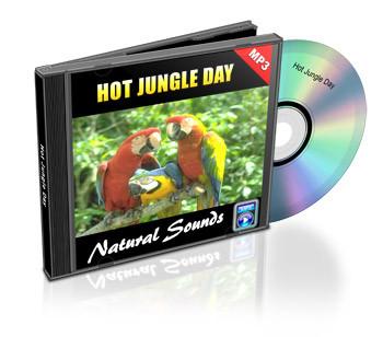 Hot Jungle Day Soundtrack