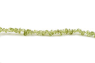 "Peridot Bead Chips 16"" -  by the strand"
