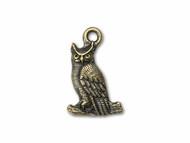 TierraCast Antique Brass Owl Charm each