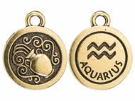 TierraCast Antique Gold Aquarius Charm each