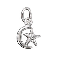 Charm Moon and Star 8x10mm Sterling Silver - each