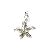 Charm Pacific Starfish 19.5x17.5mm with Jump Ring Sterling Silver - each