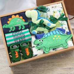Baby Dinosaur Gift Set