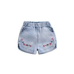 Embroidered Floral Washed Denim Shorts