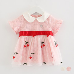 Textured Embroidered Cherry Mesh Skater Dress